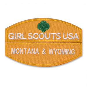 Consider, that Girl scout common wealth council of virginia