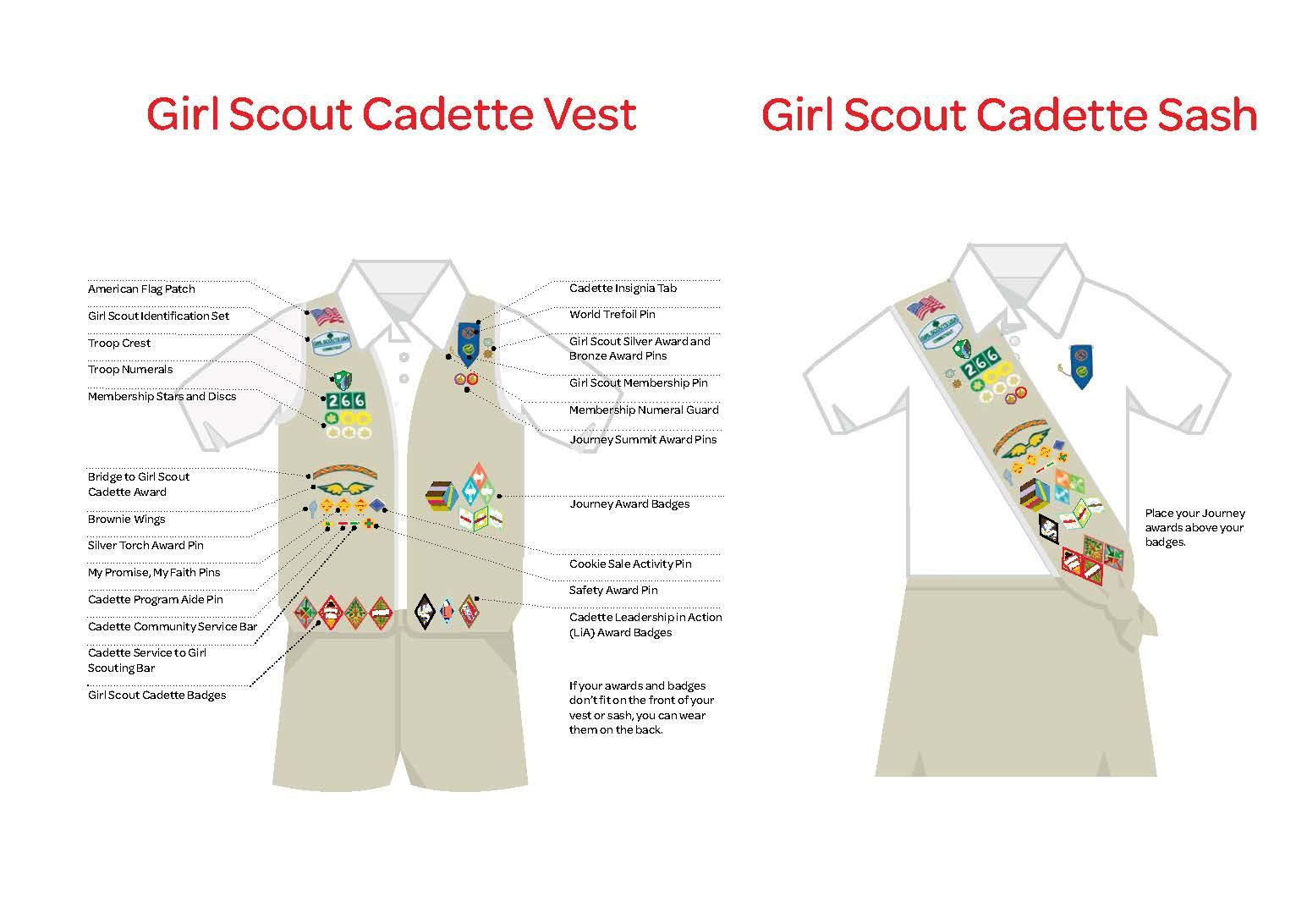 Girl Scout Girl Scout Junior Cadette Senior Nation S Capital