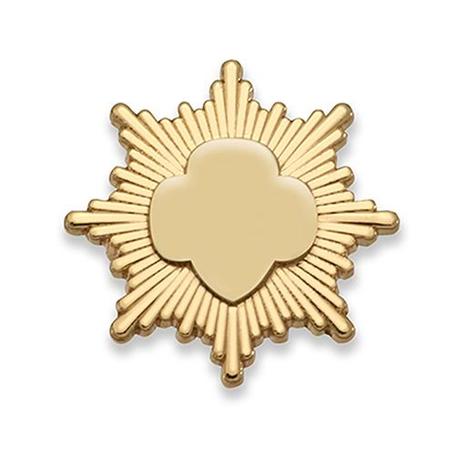 Gold Award Pin