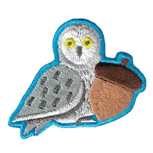 GSWPA Snow Owl Segment Get Outdoors
