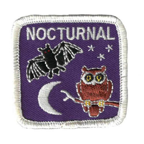 GSWPA Nocturnal Iron-On Fun Patch