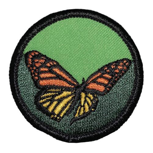 GSSEF Butterflies