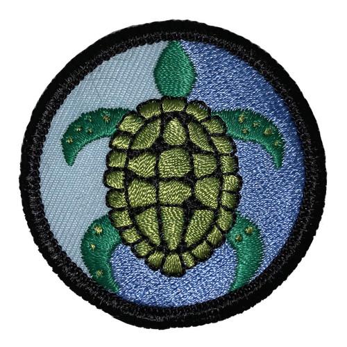 GSSEF Girl Scouts Love Sea Turtles