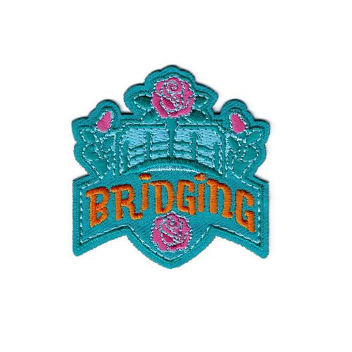 GSNI Bridging Fun Patch
