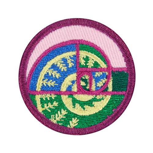 junior shapes in nature badge