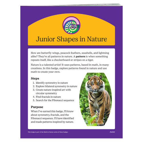junior shapes in nature requirement