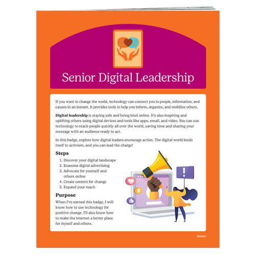 Senior Digital Leader Requirements